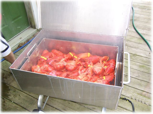 Oyster, Clam, Shrimp, Crab Seafood Steamers by Southern Steamers